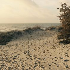 October 2014, 10 am Autumn in Falsterbo, such a perfect time to enjoy life on the beach.