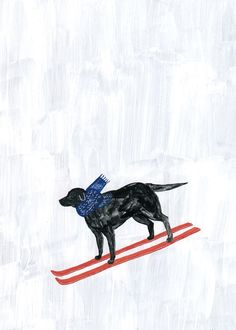 Fumi Koike - Ski-Ken