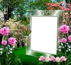 Photo Frame Wallpaper, Framed Wallpaper, Flower Boarders, Flower Frame, Family Photo Frames, Photo Picture Frames, Photomontage, Picture Borders, Foto Frame