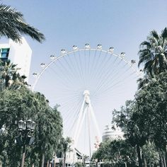 Las Vegas. Paris eye. Paris Las Vegas. Las Vegas views. Ferris wheel. Palm trees. Summer.
