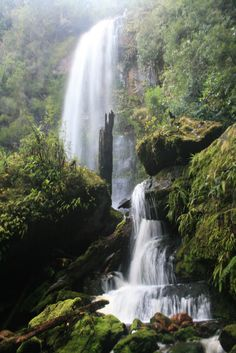Creekton Falls is a stunning waterfall situated in the Southwest National Park in Southern Tasmania.with a height of about 50 metres. Though being shorter than Adamsons Falls it is equally as...