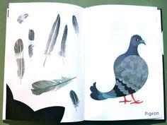 Animalarium: The Feather Collector