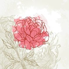Stock vector of 'Beautiful peony  design on beige background. Hand drawn vector illustration.'