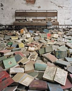 """From photographer Christopher Payne's book, """"North Brother Island: The Last Unknown Place in New York City"""""""