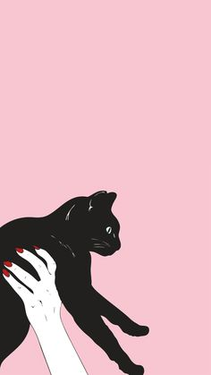 Cat, pink, and black image pink cat, soul surfer, iphone wallpaper cat Kitty Wallpaper, Iphone 6 Wallpaper Tumblr, Pink Wallpaper, Screen Wallpaper, Wallpaper Backgrounds, Photo Wallpaper, Cute Kittens, Whatsapp Pink, Cat Aesthetic