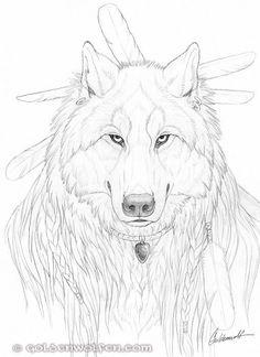 Wolf Portrait Drawing by Goldenwolf.deviantart.com on @deviantART