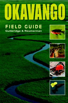 "Read ""Okavango A Field Guide"" by Lee Gutteridge available from Rakuten Kobo. After The South African Bushveld—A Field Guide from the Waterberg, this is the second comprehensive field guide to be pu. Khao Yai National Park, Squirrel Pictures, Saltwater Aquarium Fish, Fish Care, Field Guide, Animals Of The World, Holiday Travel, Travel Guide, This Book"