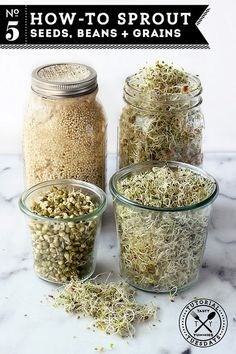 Seeds, Beans + Grains How-to Sprout: Seeds, Beans + Grains Nutrient dense and super easy to make. A simple how-to // Tasty YummiesHow-to Sprout: Seeds, Beans + Grains Nutrient dense and super easy to make. A simple how-to // Tasty Yummies Growing Sprouts, Growing Microgreens, Growing Vegetables, Do It Yourself Food, Sprouting Seeds, Sprouting Grains, Homemade Almond Milk, Raw Food Recipes, Health Recipes