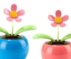 Finally, some flowers that you can't accidentally kill when you forget to water them. This set of flowers in a blue and pink pot gets solar energy from the sun and dance around. Whenever you're feeling down you can look at these cute flowers and smile.