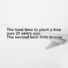 take action. now.  #quote #quotes #qotd #quoteoftheday #startupquotes #startupquote #entrepreneur #entrepreneurs #quotesoftheday #quotesofinstagram #quotesforlife #quotestagram #quotesforyou #quotes4you #quotetoday #businessquote #businessquotes #entrepreneurquote #entrepreneurquotes #entrepreneurialmindset #mindset #businessmindset #startup #startups #startupbusiness #startupbusinesses #startuplifestyle #startuplife #startupgrind #businesspassion