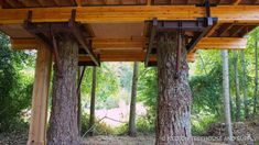 Trailer Casa, Tree House Plans, Building A Treehouse, Jungle House, Build Your Own Shed, Cool Tree Houses, Tree House Designs, Orcas Island, Forest View