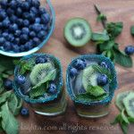 With kiwi season in full force, these unique mojito cocktails with recipes with food pairings will make your mouth water. Kiwi and Blueberry Cocktails Cherry Limeade Recipe, Mojito Recipe, Kiwi, Summer Bbq, Summer Drinks, Beach Cocktails, Small Food Processor, Food Processor Recipes, Rum