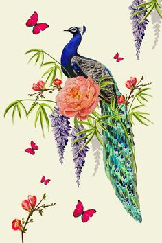 Peacock Images, Peacock Photos, Peacock Art, Tattoo Background, Peacock Tattoo, Botanical Flowers, Love Wallpaper, Floral Illustrations, Textured Background