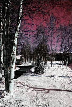 ✮ Invernal Landscape - Alaska