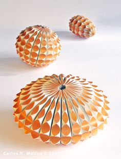 Paper Forms - Gourds/Sea Creatures by Carlos N. Molina - Paper Art, via Flickr