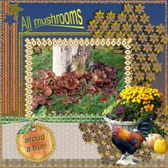 all mushrooms TWO_ACountryAutumn_Elements
