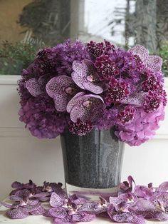 Eye Candy :: fleurs trémolo by yukinobu fujino Amazing Flowers, My Flower, Fresh Flowers, Purple Flowers, Beautiful Flowers, Orchid Centerpieces, Orchid Arrangements, Ikebana, Artificial Orchids