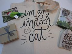 The Cat Kit Subscription Box Review + Coupon - July 2016 - Read our review of the July 2016 The Cat Kit subscription box for cats and save with our coupon!