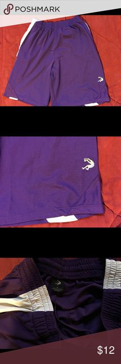 MENS XL PURPLE BASKETBALL SHORTS Pre owned no brand Shorts Athletic