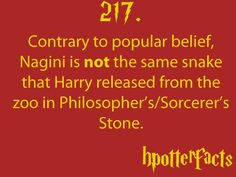 Harry Potter Facts Contrary to popular belief, Nagini is not the same snake that Harry released from the zoo in Philosopher's/Sorcerer's Stone. That snake was a guy, Nagini is female. Harry Potter Fun Facts, Mundo Harry Potter, Harry Potter Love, Harry Potter World, James Potter, Hp Facts, Movie Facts, Mischief Managed, The Book