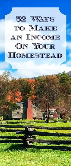 Here are 52 great ideas for making money from your homestead - even if you don't have a lot of land!