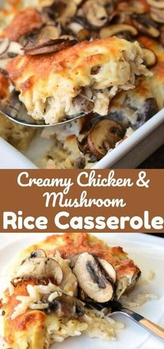 """Creamy Chicken Mushroom Rice Casserole. Delicious, creamy, cheesy rice casserole recipe made with lots of mushrooms and chicken.Most Populer Reviews From allrecipes.comReview 1:""""Was absolutely delicious! Made it with a Caprese salad on the side. Also"""