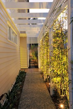 gartendesign ideen Narrow Fence Pathway - Bamboo clivia etc Side Yard Landscaping, Backyard Patio, Landscaping Ideas, Seiten Yards, Garden Yard Ideas, Fence Garden, Garden Paths, New Home Builders, Outdoor Rooms
