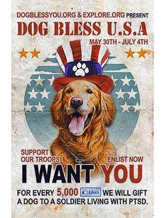 Help a US Vet get a service dog!
