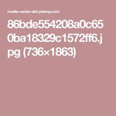 86bde554208a0c650ba18329c1572ff6.jpg (736×1863)