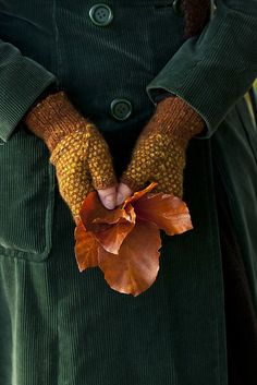 Make sure you get out collecting crunchy golden leaves for your Autumnal craft projects.