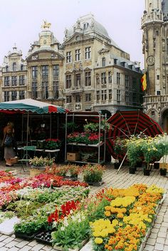 Flower Market - Grand-Place, Brussels Belgium Early on summer mornings, Brussels' Grand-Place is turned into a giant flower market. One of the many Guildhalls serves as the backdrop to this floral scene. Places Around The World, Oh The Places You'll Go, Travel Around The World, Places To Travel, Places To Visit, Around The Worlds, Bósnia E Herzegovina, Thinking Day, Flower Market