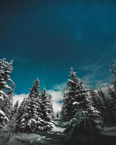 """""""We wish you a Merry Christmas with this photo from winter wonderland at Senja by @seffis"""""""