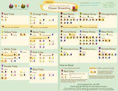 Luxury Animal Crossing Coffee Guide