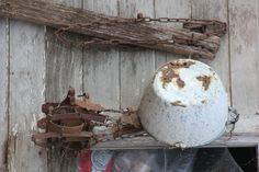 The old garden shed makes an ideal space to hang rusted garden equipment for that rustic look.