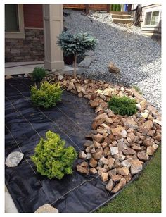 Landscaping With Rocks, Backyard Landscaping, Landscaping Design, Stone Landscaping, Small Front Yard Landscaping, Backyard Ideas, Patio Ideas, Front Yard Ideas, Diy Landscaping Ideas