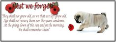 Pug Holiday Themed Facebook Cover Photos For Your Timeline. Pug Remembrance/Veterans Day Facebook Cover Photo