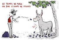 Nouveau : expressions provençales et marseillaises