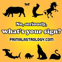 Primal Zodiac Signs By Combination (Western + Eastern) Chimpanzee, wolf, and polar bear  Whole lotta personalities in here