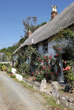 Thatched Cottages - source http://vacationrentals.bg/thatched-cottages/  by  #condo #chalets #cottage
