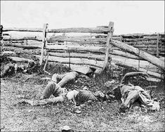 Civil War photo of dead soldiers of the Louisiana Regiment at Antietam, Maryland. This is one of the photographic images that were put on display in NYC by the Mathew Brady Studio. It was the first time that most people saw the horrors of war.
