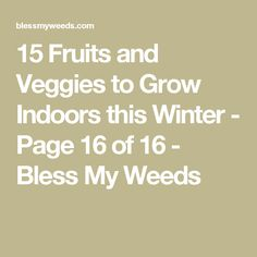 15 Fruits and Veggies to Grow Indoors this Winter - Page 16 of 16 - Bless My Weeds