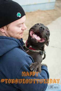 Happy Tongue Out Tuesday  everyone! This little guy is available for adoption at the BARCS Animal Shelter in Baltimore, Maryland! Repin and like and love and let's find this cute little guy a home :)