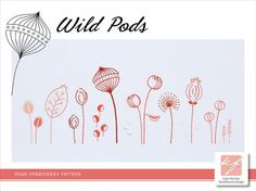 Wild Pods Multiple stitches depict a variety of wild pods  The design measures 16½ x 6½ inches (42 x 17cm).  This is a 12-page pattern in PDF