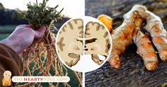 If You Eat These 5 Brain-Boosting Herbs Every Day, You May Never Get Alzheimer's