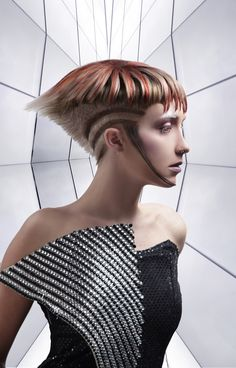 My Wella Trend vision 2014 that I placed in the top 15 for Canada ( BORDERLINE BEAUTY )