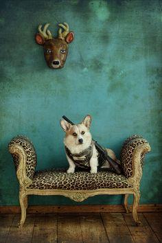 """The Deer Hunter"" by Carla Broekhuizen"