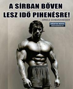 Arnold Schwarzenegger, Buddha, Statue, Workout, Work Out, Sculptures, Sculpture, Exercises
