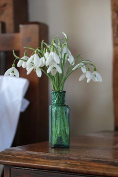 plant enough snowdrops so that they can be picked to take indoors without feeling any damage has been done on the display in the garden Wild Acre: cutting patch course
