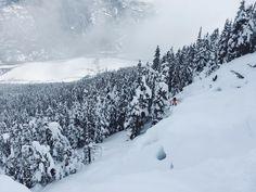 #iSpySnowboardSaturday I spy through my goggle eyes... A SNOWBOARDER! Let us know if you see her too. . . . : British Columbia : @claudia_avon : @petitepoire #PeakSnowboarding #Snowboard #Snowboarding #Snowboarder #Mountain #Gnarly #Shredding #Snow #PicOfTheDay #wcw #NoFriendsOnAPowderDay #Pow #Powder