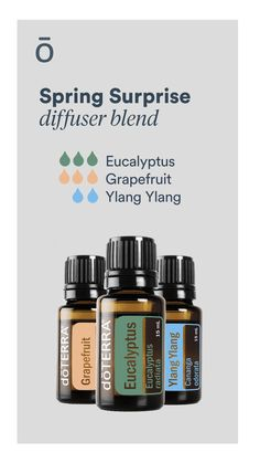Eucalyptus essential oil has a clean, refreshing aroma that supports easy breathing, dispels odors, and clears the mind. Emotionally, Eucalyptus is used to decrease feelings of tension and promote relaxation. Essential Oils 101, Essential Oils For Sleep, Essential Oil Diffuser Blends, Eucalyptus Radiata, Eucalyptus Essential Oil, Doterra Diffuser, Doterra Oils, Young Living, Lavender